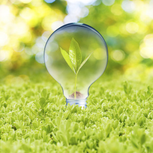 energy-efficiency-bulb-national-records-office  Energy Efficiency Home Improvement energy efficiency bulb national records office